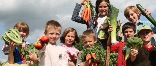 enfant_recoltant_legumes[1]